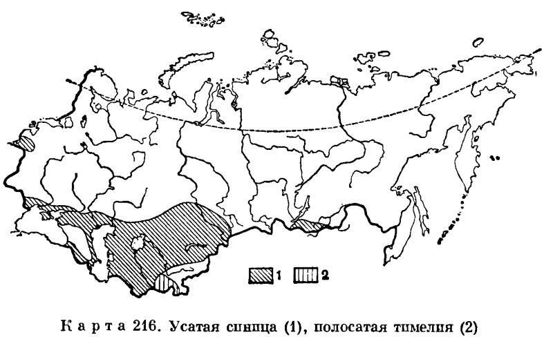 карта ареала обитания-2